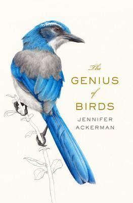 genius  birds  jennifer ackerman
