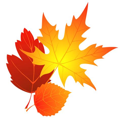 leaves leaf clip art   clipart images clipartingcom