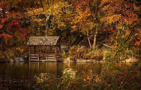 gros morne newfoundland  autumn wonderland marble