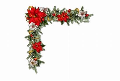 Corner Christmas Pretty Floral Clip Poinsettias Border