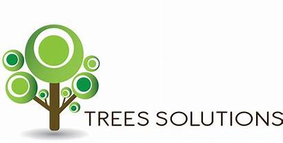 Solutions Partners Zendesk Tree Trees Client Services