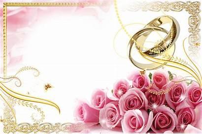 Blush Pink Flower Clipart Transparent Frame Roses