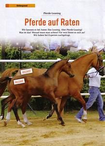 Küchenzeile Auf Raten : pferde auf raten naminco leasing gmbh ihr kompetenter leasingmarkler ~ Indierocktalk.com Haus und Dekorationen