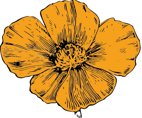 california poppy clip art  clkercom vector clip art