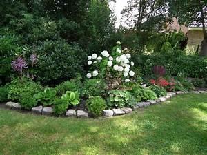 Begleitpflanzen Für Rosen : partner f r rispenhortensie limelight mein sch ner garten forum ~ Orissabook.com Haus und Dekorationen