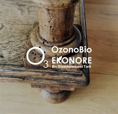 eliminare tarli dai mobili come eliminare i tarli dai mobili bio rimedio ekonore
