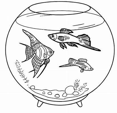 Coloring Aquarium Fish Pets Pages Pet Tank