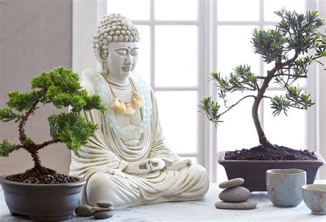 1000 ideas about indoor zen garden on best