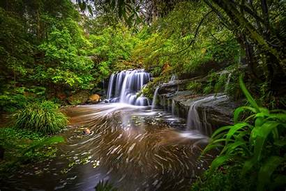 Stream Forest Waterfall Wallpapers River Nature Trees