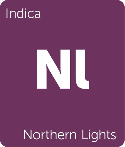 northern lights leafly northern lights cannabis strain information leafly