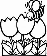 Coloring Pages Bee Flowers Sheet Printable Print Tulips sketch template