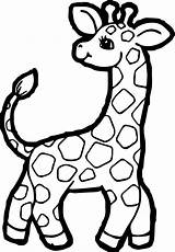 Giraffe Coloring Pages Clipart Printable Sheet Colouring Cartoon Children Awesome Cabinet Kitchen Fabulous Colorings Drawings Animal Webstockreview Wecoloringpage Mylifeuntethered Zoo sketch template