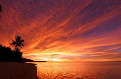 Beach Landscape Silhouette Sea Trees Desktop Background