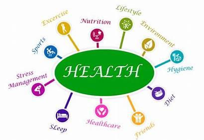 Wellness Health Program Programs Corporate Students Fitness