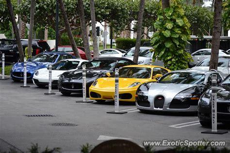 Bugatti In Miami by Bugatti Veyron Spotted In Miami Florida On 11 29 2013