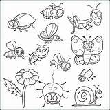 Coloring Insect Insects Pages Printable Bugs Colouring Pdf Sheets حشرات للتلوين Preschool Getdrawings Bee Animal Getcolorings Sheapeterson Friends sketch template