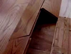 wood flooring problems moisture related floor central With how to fix buckling hardwood floors