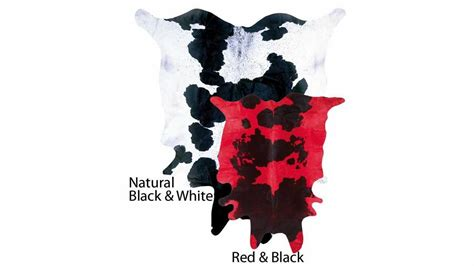 Cowhide Rugs Nyc by Cowhide Rugs New York By Stylishrugs