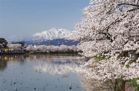 Forget Tokyo, Niigata Is The Next Top Japan Travel