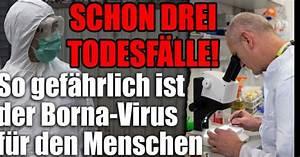 Spinnmilben Gefährlich Für Menschen : bornavirus aktuell in deutschland schon 3 tote so gef hrlich ist das virus f r menschen ~ Whattoseeinmadrid.com Haus und Dekorationen
