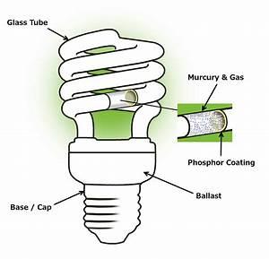 Compact Fluorescent Lamps  Cfl   U0026 Fluorescent Tubes