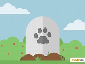 Katze Im Garten Begraben : was tun wenn eine katze stirbt ~ Lizthompson.info Haus und Dekorationen