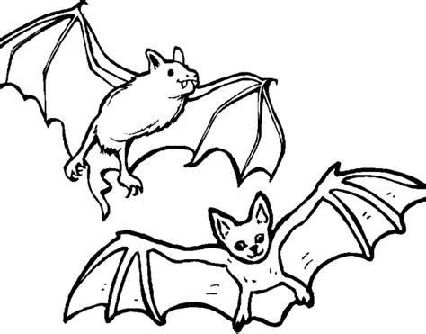 Mammifero Volante by Disegno Pipistrello Da Colorare Disegno Talpa Da Colorare