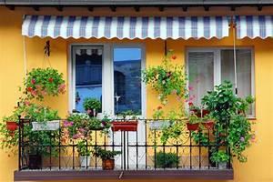 sonnenschutz auf dem balkon klassisch mit balkonschirm With französischer balkon mit stauden garten
