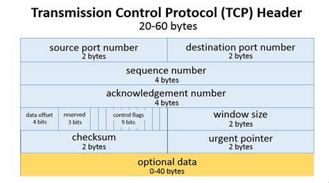 <b>TCP</b> <b>Header</b>s and...