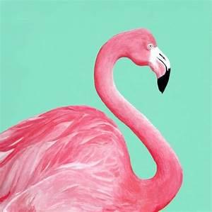14 Fun Ways to Use Flamingo Decor in Your Home - Celebrate