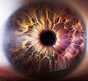 16 Fascating Extreme Close Ups Of The Human Eye