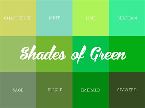 shades of green color understanding the different shades of green