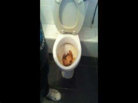 drap housse ikea 80x200 unclog a toilet 28 images index of wp content uploads 2010 03 handyman pours dish soap into