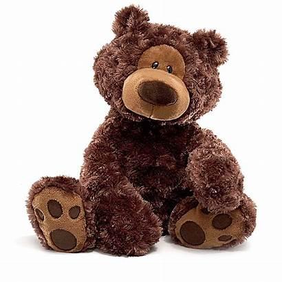 Teddy Bear Transparent Chocolate Peluche Philbin Stuffed