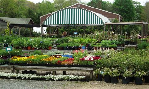 garden supply rochester ny nursery smith s