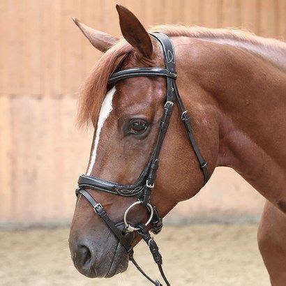bridle dressage ivy kavalkade ergonomic smartpakequine equestrian