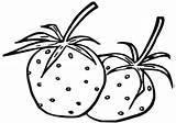 Strawberries Coloring sketch template