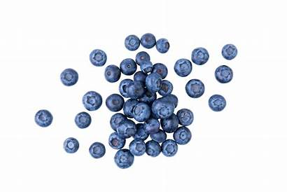 Blueberries Fruits Glycemic Low Openfit