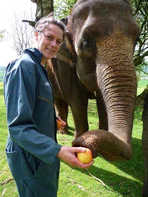keeper zsl zoo elephant whipsnade london experiences wysiwyg zoological society