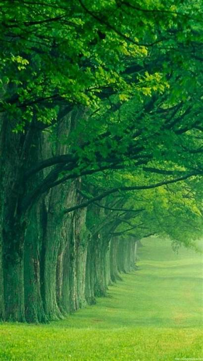 Vertical Background Nature Samsung Wallpapers Desktop Windows