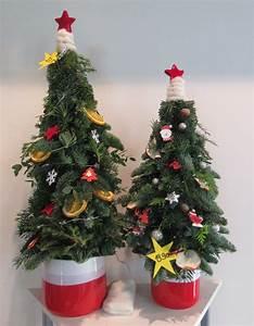 Alternative Zum Weihnachtsbaum : pflanzen gestecke und blumen in chemnitz ~ Sanjose-hotels-ca.com Haus und Dekorationen
