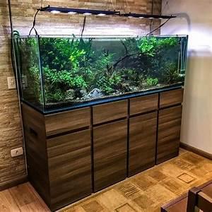 Aquariums And Aquascaping Par Trent R
