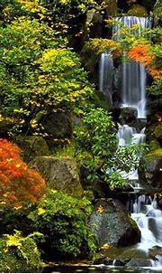 Screensavers and Wallpaper Waterfall - WallpaperSafari