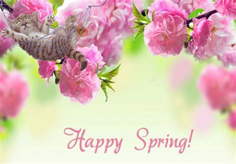 day  spring  happy spring ecards greeting cards