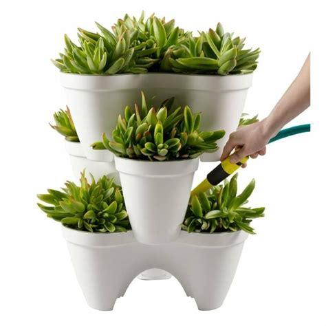 plante pour pot exterieur grand pot ext 233 rieur un accessoire pour votre terrasse design