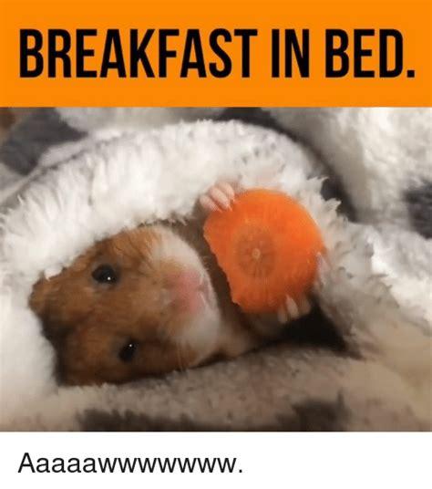 Breakfast In Bed Meme - 25 best memes about breakfast in bed breakfast in bed memes