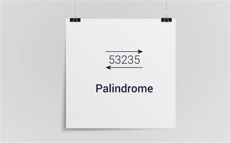 Palindrome Number Examples