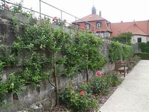 Garden Feelings Wer Steckt Dahinter : 49 best spalierobst images on pinterest espalier fruit ~ Watch28wear.com Haus und Dekorationen
