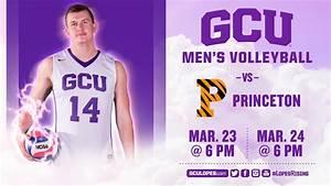 Men's Volleyball vs Princeton Mar 24th, 2017 - YouTube