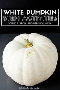 White Pumpkin STEM Activities for Kids Fall and Halloween ...